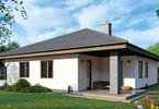 Morizon WP ogłoszenia | Dom w inwestycji Osiedle Rozalin, Lusówko, 138 m² | 5006