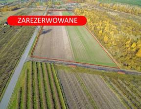 Działka na sprzedaż, Wyskoki, 23783 m²