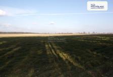 Działka na sprzedaż, Nowa Wieś, 14600 m²