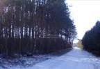 Działka na sprzedaż, Żdżary, 36600 m²   Morizon.pl   8159 nr4
