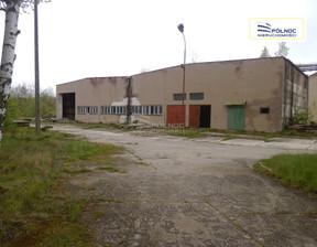 Magazyn, hala na sprzedaż, Okmiany, 15769 m²