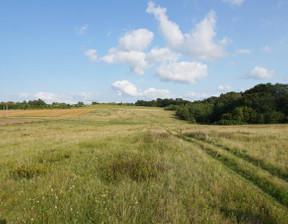 Działka na sprzedaż, Łęcze, 29000 m²