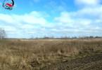 Morizon WP ogłoszenia   Działka na sprzedaż, Piotrowo, 40000 m²   0108