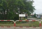 Działka na sprzedaż, Kicin koło Poznania, 8500 m²   Morizon.pl   9535 nr16