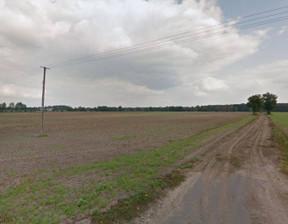 Działka na sprzedaż, Sulęcinek, 89242 m²