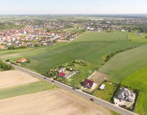 Działka na sprzedaż, Rokietnica Poznańska, 45000 m²