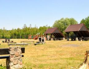 Działka na sprzedaż, Murowana Goślina / Mściszewo, 48297 m²