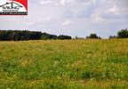 Działka na sprzedaż, Gruszczyn, 25000 m² | Morizon.pl | 8378 nr3