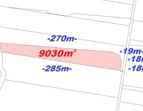 Działka na sprzedaż, Gorzów Wielkopolski Podgórna, 9030 m²