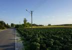 Działka na sprzedaż, Astachowice, 1170 m² | Morizon.pl | 1240 nr6