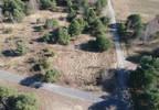Działka na sprzedaż, Leszno, 3019 m²   Morizon.pl   1400 nr12