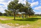 Działka na sprzedaż, Leszno, 3264 m²   Morizon.pl   1481 nr10