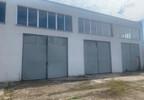 Magazyn, hala do wynajęcia, Skarbimierz Kasztanowa 21, 245 m²   Morizon.pl   6780 nr9
