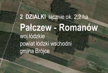 Działka na sprzedaż, Pałczew, 7000 m²