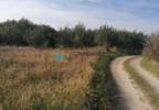 Działka na sprzedaż, Czarnylas, 5000 m² | Morizon.pl | 8271 nr10