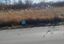Działka na sprzedaż, Gdańsk Rudniki, 60110 m²