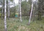 Działka na sprzedaż, Lisówko, 9200 m²   Morizon.pl   2768 nr6