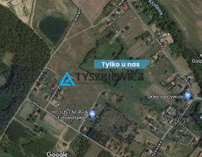 Działka na sprzedaż, Kleszczewo Spokojna, 5087 m²