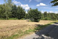 Działka na sprzedaż, Karniowice Parkowa, 6935 m²