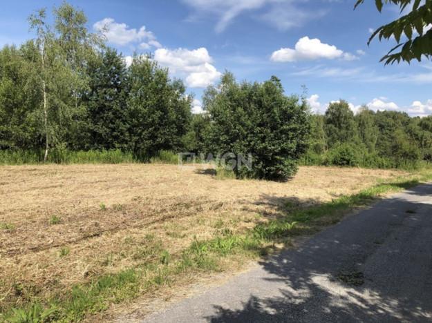 Działka na sprzedaż, Karniowice Parkowa, 6935 m² | Morizon.pl | 2391