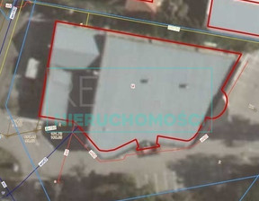 Lokal użytkowy na sprzedaż, Kanie, 1100 m²