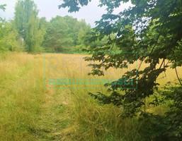 Morizon WP ogłoszenia   Działka na sprzedaż, Milanówek, 4260 m²   8121