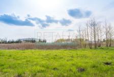 Działka na sprzedaż, Grodzisk Mazowiecki, 6000 m²