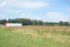 Działka na sprzedaż, Mierzyn Lubieszyńska, 5055 m²