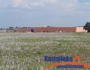 Działka na sprzedaż, Ustowo, 50000 m²