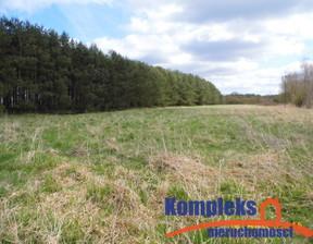 Działka na sprzedaż, Brzózki, 5000 m²
