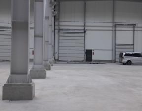 Magazyn, hala do wynajęcia, Dołuje, 1150 m²