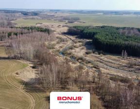 Działka na sprzedaż, Bażyny, 265000 m²