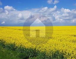 Morizon WP ogłoszenia | Działka na sprzedaż, Sobótka, 4700 m² | 2938