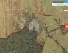 Działka na sprzedaż, Miłogostowice, 196400 m²