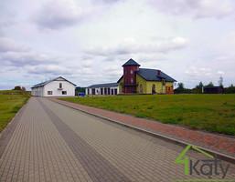 Morizon WP ogłoszenia   Dom na sprzedaż, Bolesławowo, 450 m²   6512