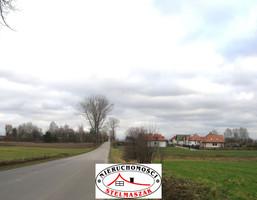 Morizon WP ogłoszenia | Handlowo-usługowy na sprzedaż, Wiązowna, 13800 m² | 9132