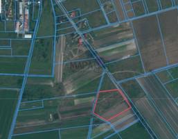 Morizon WP ogłoszenia | Działka na sprzedaż, Lubczyna, 13408 m² | 6190