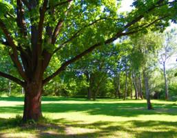 Morizon WP ogłoszenia | Działka na sprzedaż, Konstancin-Jeziorna, 2200 m² | 5238