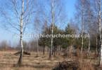 Morizon WP ogłoszenia   Działka na sprzedaż, Rusiec, 1290 m²   0465
