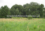 Morizon WP ogłoszenia | Działka na sprzedaż, Baranów, 11000 m² | 1791