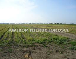 Morizon WP ogłoszenia | Działka na sprzedaż, Chlebnia, 100000 m² | 6119