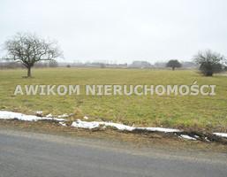 Morizon WP ogłoszenia | Działka na sprzedaż, Boża Wola, 22000 m² | 2232
