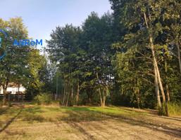 Morizon WP ogłoszenia   Działka na sprzedaż, Borowina Topolowa, 3846 m²   2631