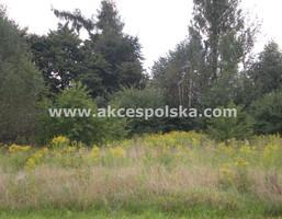 Morizon WP ogłoszenia | Działka na sprzedaż, Klarysew, 2591 m² | 4766