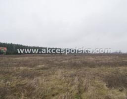 Morizon WP ogłoszenia   Działka na sprzedaż, Solec, 1000 m²   3024