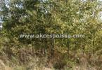 Morizon WP ogłoszenia | Działka na sprzedaż, Warszawa Ursynów, 4695 m² | 9531