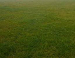 Morizon WP ogłoszenia | Działka na sprzedaż, Łazy Łączności, 1500 m² | 9692
