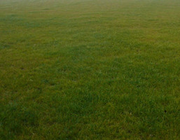 Morizon WP ogłoszenia | Działka na sprzedaż, Łazy, 1814 m² | 6533