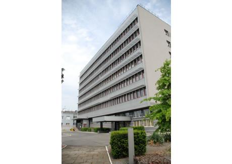 Biuro do wynajęcia <span>Wrocław, Fabryczna, Grabiszyn-Grabiszynek, Grabiszyńska</span> 1