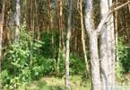 Morizon WP ogłoszenia | Działka na sprzedaż, Grabnowola-Kolonia, 50000 m² | 5549
